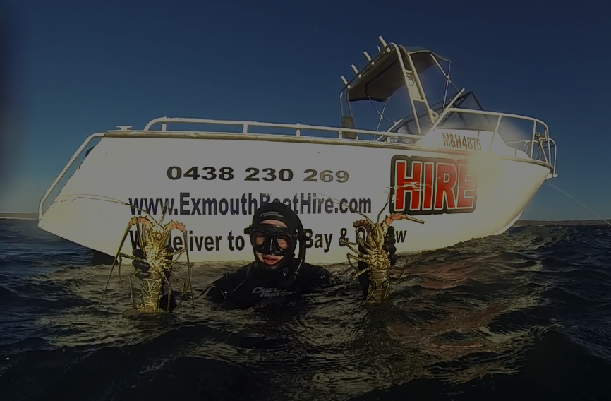 boat hire exmouth