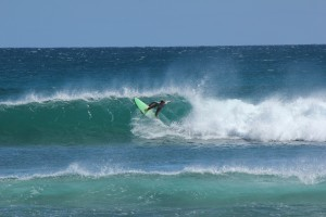 Surfing Exmouth